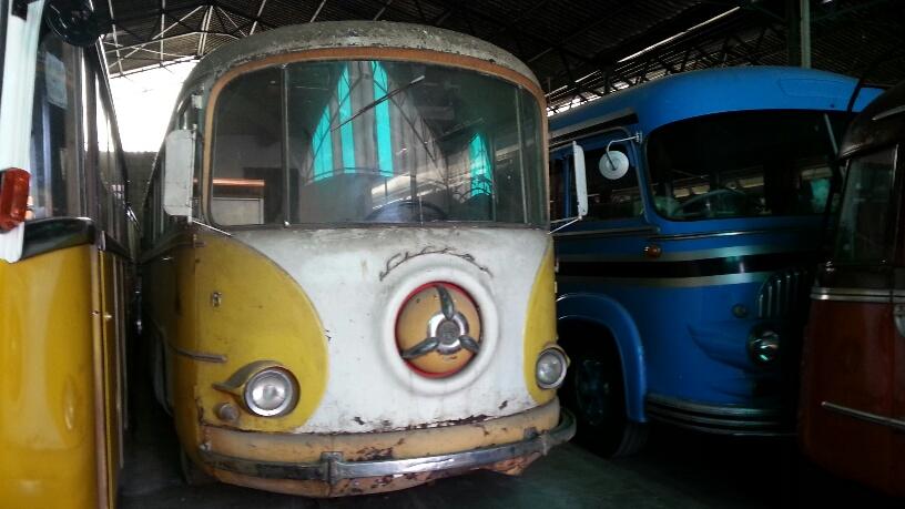 Passione bus: collezionista piacentino possiede più di 600 esemplari